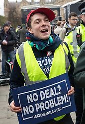 © Licensed to London News Pictures. 15/01/2019. London, UK. Pro-Brexit demonstrator Max Hammet Millay (left) is escorted off College Green by police. This evening, MPs are due to vote on British Prime Minister Theresa May's EU withdrawal deal, after the previous vote in December was postponed. Photo credit : Tom Nicholson/LNP