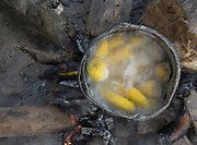 Boiling plantain.