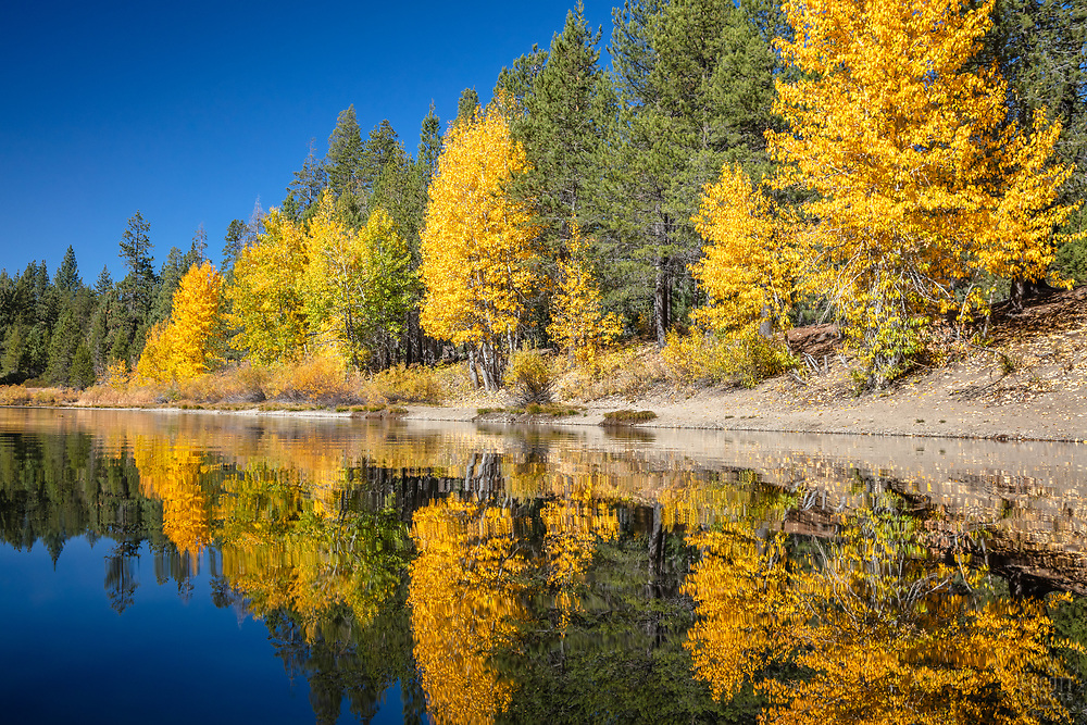 """""""Coldstream Pond in Autumn 6"""" - Photograph of Coldstream Pond, also known as Donner Pond, shot in the fall in Truckee, California."""