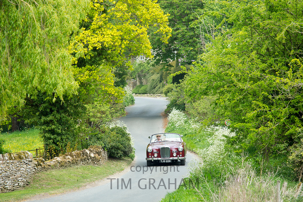 Motorist driving 1961 British made Alvis TD21 DHC Series 1 drophead ooupe classic car on country lane in The Cotswolds, England