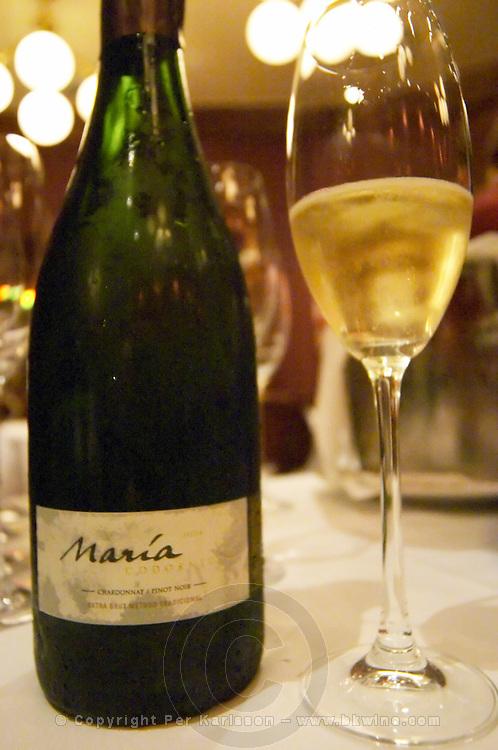 Bottle of Maria Chardonnay Pinot Noir Extra Brut 2004 Metodo Traditional Codorniu Mendoza The Oviedo Restaurant, Buenos Aires Argentina, South America