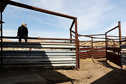 Cowgirl on fence, Ladder Ranch, west of Truth or Consequences, New Mexico, USA.