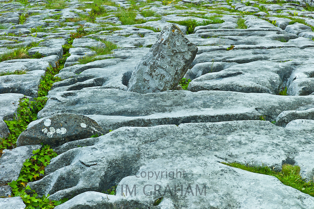 Limestone pavement glaciated karst landscape in The Burren,  County Clare, West of Ireland