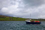 Fishing boat An Portán Óir.  Dingle Bay, Kerry, Ireland