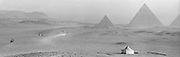 Location - The Grateful Dead – Egypt 1978