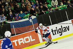 of Slovenia during ice-hockey match between Slovenia and France in Slovenia Euro ice hockey challenge, on November 9, 2012 at Hala Tivoli, Ljubljana, Slovenia. (Photo By Grega Valancic / Sportida)