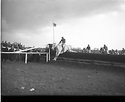 Irish Grand National at Fairyhouse (Easter Monday).06/04/1953 Overshadow the oldest horse ever to win at 13 years old,