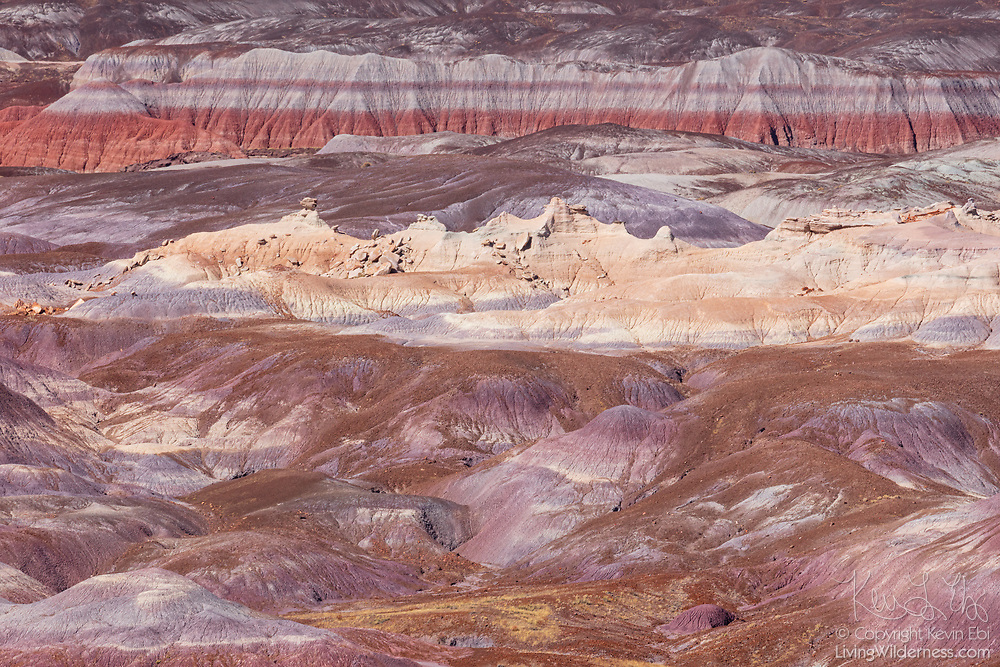 Colorful layers of siltstone, mudstone and shale are visible in the badlands near the Blue Mesa in Petrified Forest National Park, Arizona. The layers contain iron and manganese, which provide the pigments for the brilliant and varied colors.