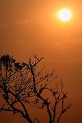 Nova Lima_MG, Brasil...Estacao Ecologica de Fechos em Nova Lima, Minas Gerais...Fechos Ecological Station in Nova Lima, Minas Gerais...Foto: BRUNO MAGALHAES / NITRO.