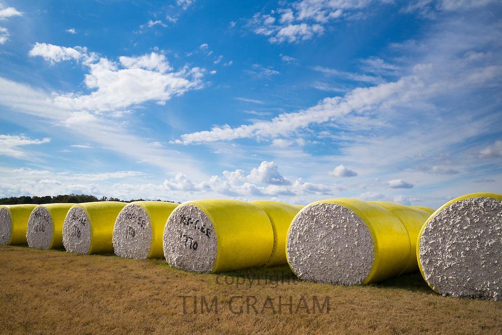 Bales of cotton at plantation along the Mississippi Delta at Tensas Co-op Gin Inc, near Tallulah, Louisiana, USA