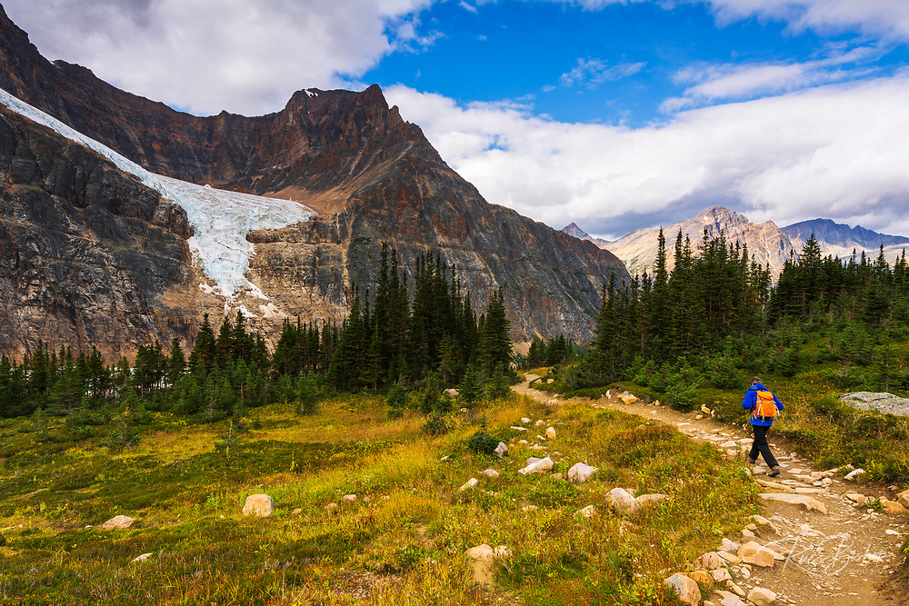 Hikers in Cavell Meadow under the Angel Glacier, Mount Edith Cavell, Jasper National Park, Alberta Canada