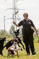 Dog handler on patrol outside HMP Bronzefield, women's prison in Surrey