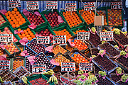 A selection of fresh fruit for sale at a market stall in London.