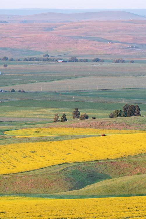 Crop patterns, Wallowa Valley, Oregon