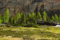 Hiking to Opabin Lake.<br /> <br /> A weekend trip to the Lake O'Hara wilderness area in Yoho National Park<br /> <br /> ©2014, Sean Phillips<br /> http://www.RiverwoodPhotography.com