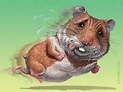 The Hamster got out of the wheel! Stop running in place. Get better results. Photoshop for Self Promotion.