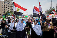 Supporters of president Morsi demonstrate in Cairo, one year after the leader of the Muslim Brotherhood came to power, in Cairo, Egypt