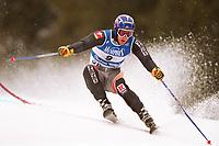 Kjetil Andre AAMODT,                     Ski alpin Riesenslalom   Norwegen