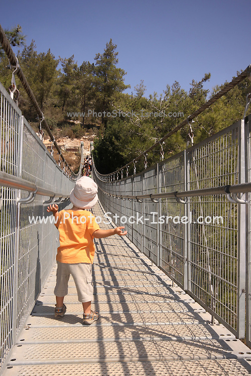 Israel, Carmel Mountain, a 70 meter suspension bridge in the Nesher Park Boy of three stands on the bridge - model release available