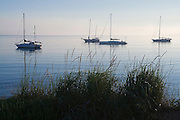 Dawn comes to sleeping sailboats anchored in the calm waters of Port Angeles Harbor, Olympic Peninsula, Washington on August 23, 2007.