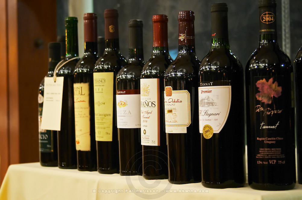 Wine bottles on a row from a selection of Uruguayan producers. Montevideo, Uruguay, South America