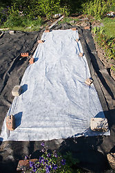 Membrane laid down on allotment floor to suppress weed growth,