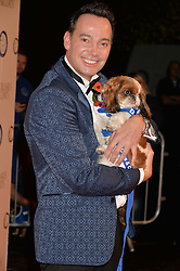 CRAIG REVEL HORWOOD at Battersea Dogs & Cats Home's Collars & Coats Gala Ball held at Battersea Evolution, Battersea Park, London on30th October 2014.