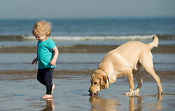 © Licensed to London News Pictures. 28/03/2012..Saltburn, England..As temperatures rise this week the beach at Saltburn in Cleveland attracts the visitors as they enjoy the warm weather. Hannah Cuthbert, 18 months from Stockton and her dog, Fudge, enjoy playing on the beach...Photo credit : Ian Forsyth/LNP