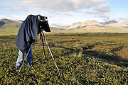 A photographer sets up a medium format camera near Galbraith Camp in the North Slope to capture some of the gorgeous landscape on traditional film. Dalton HIghway and the Alyeska pipeline can be seen in the distance.