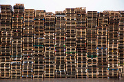 A large stack of wooden pallets on an industrial site near the M74 on the edge of Happendon Wood near Lanark, Scotland.