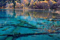 August 9, 2017 - Jiuzhaigou, Jiuzhaigou, China - Jiuzhaigou, CHINA-August 9 2017: (EDITORIAL USE ONLY. CHINA OUT) ..The photo shows the stunning scenery of Jiuzhaigou Scenic Area before earthquake in southwest China's Sichuan Province. A 7.0-magnitude earthquake hits Jiuzhaigou on August 8th, 2017. (Credit Image: © SIPA Asia via ZUMA Wire)