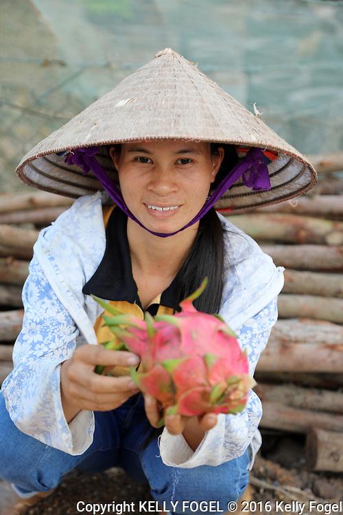 Vietnam 2016