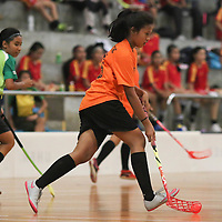 Orchid Park Secondary (OPS) edged out Tanjong Katong Secondary (TK) 4-1 in the semi-finals of the National B Division Girls Floorball Championship.