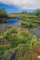 Kaloko Fish Pond (freshwater pond), Kaloko-Honokohau National Historical Park, Kona Coast, Big Island, Hawaii, USA