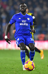Cardiff City's Oumar Niasse in action during the Premier League match at the Cardiff City Stadium.