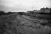 06-10/04/1964.04/06-10/1964.06-10 April 1964.Views on the River Shannon. A sad reflection of a dead canal. The dried up end of the Royal Canal at Killashee near Lanesboro, at its junction with the river Shannon, show the importance of the work done by the various Ireland Waterways Associations and clubs.