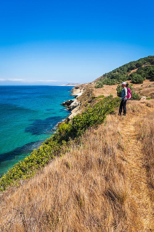 Hiker on the bluff below the Torrey Pine grove, Santa Rosa Island, Channel Islands National Park, California USA
