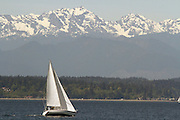 A sailboat heads northward into the wind.  (Greg Gilbert / The Seattle Times)