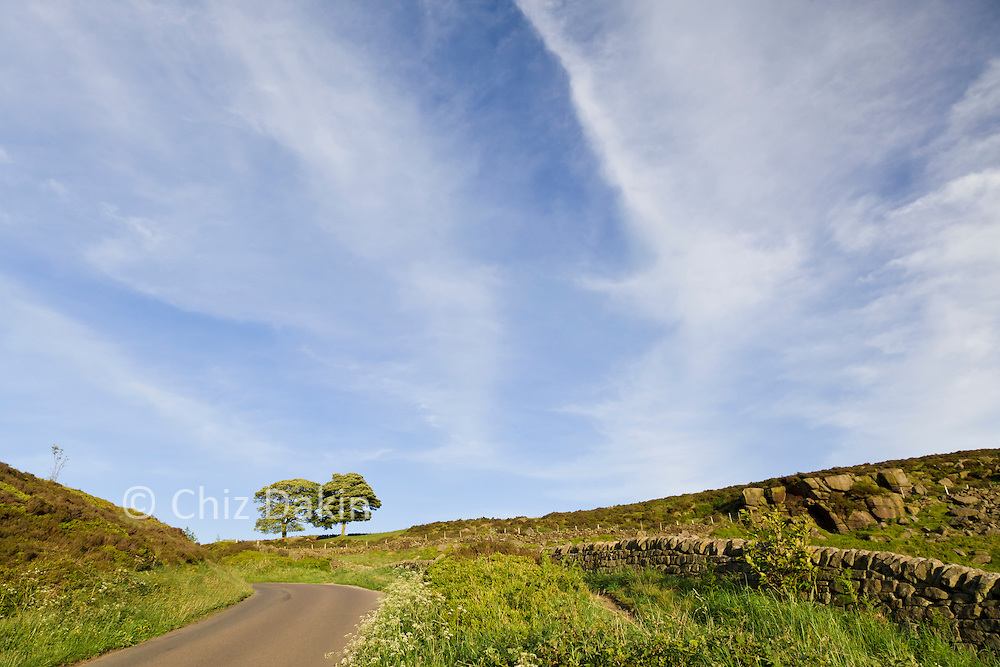 Trees and clouds in summer sunlight - view eastwards up the lane at Curbar Gap, Peak District National Park