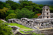 Palenque Jungle and Ruins