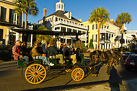 A horse carriage tour driving down South Battery Street in the historic district of Charleston, South Carolina