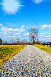 A Bright Sun Shines Down The Gravel Path
