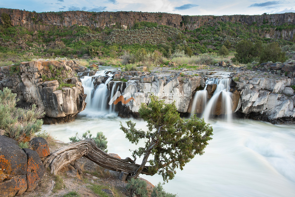 Spring high water during sunset at Cauldron Linn, also known as Star Falls on the Snake River in southern Idaho.