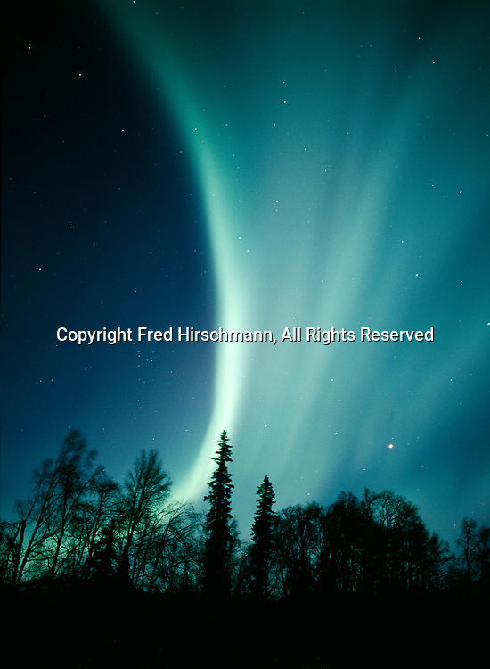 Aurora above boreal forest during early morning hours of November 15, 2003, Denali State Park, Alaska.