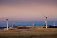 evening light on electric generating windmills in the Palouse region of eastern Washington, USA