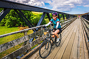Cyclists on the Otago Central Rail Trail, Otago, South Island, New Zealand