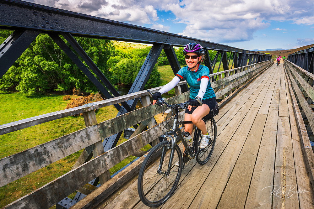 Cyclists on the Otago Central Rail Trail, Otago, South Island, New Zealand