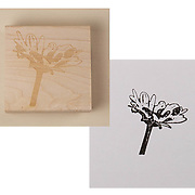 """2.5"""" RUBBER STAMP: A rubber stamp of the oxeye daisy from the 80x80 Project - perfect for decorating letters, postcards, or anything else! PRICE: $30.00 plus shipping"""