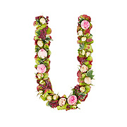 Capital Letter U Part of a set of letters, Numbers and symbols of the Alphabet made with flowers, branches and leaves on white background