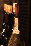 Corks in bottle necks, close-up. Chateau de Beaucastel, Domaines Perrin, Courthézon Courthezon Vaucluse France Europe